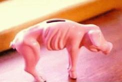 Magerschwein